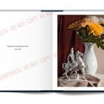 OpenBook-allach01